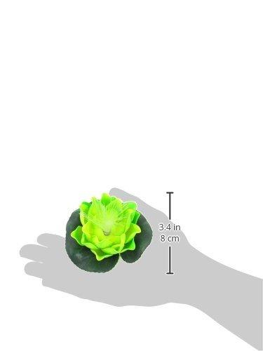 Amazon.com : eDealMax Planta de Luz acuario de plástico Lotus LED, 3.9 pulgadas de diámetro, Verde claro : Pet Supplies