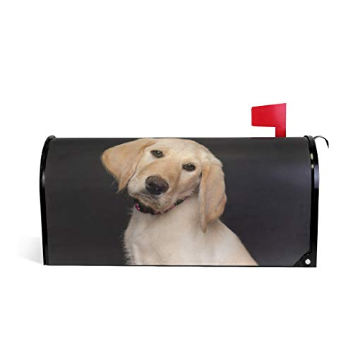 WOOR Yellow Lab Puppy Dog Magnetic Mailbox Cover Oversized-20.8