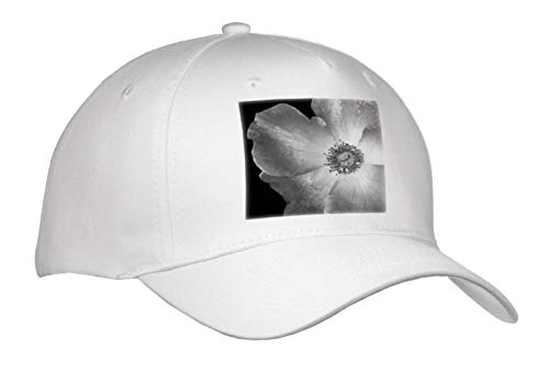 3dRose Stamp City - Flowers - Black and White Macro Photograph of a Playboy Rose. - Adult Baseball Cap (Cap_312227_1)