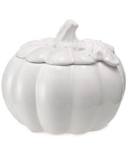 Thanksgiving Harvest White Porcelain Covered Pumpkin Soup Bowl 2 Piece Set (Soup Covered Tureen Porcelain)