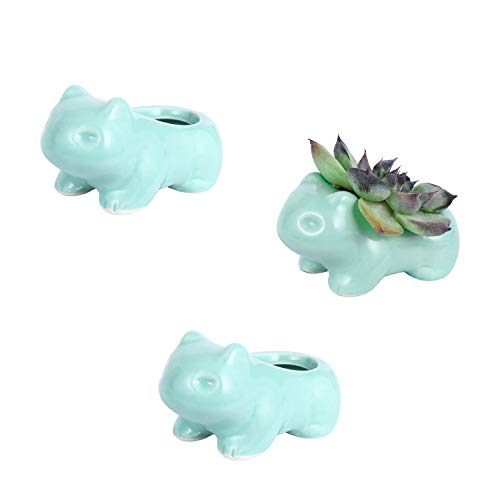 DOYOLLA Mini Bulbasaur Succulent Planters Cute Animal Flower Pots Flower Vases 3 Pack