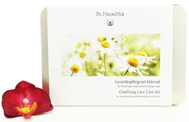 Dr Hauschka Cleansing Mask (Dr. Hauschka Clarifying Face Care Kit)