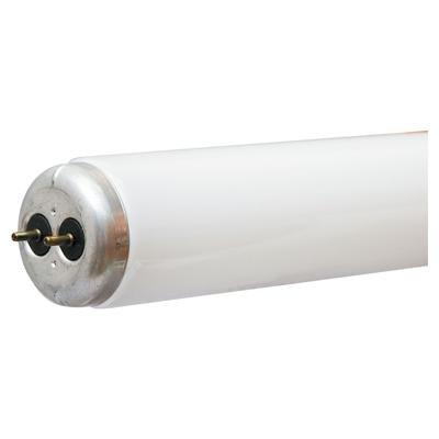 36 inch t12 bulb - 1