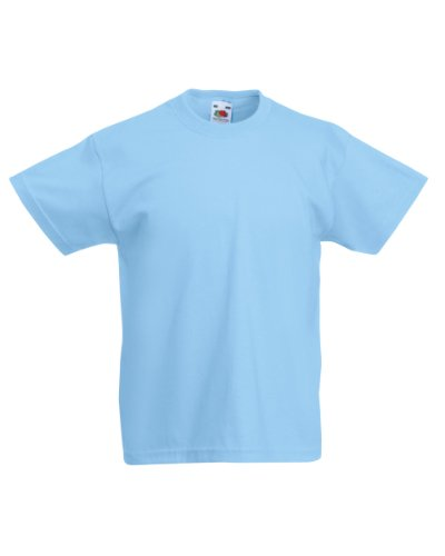 (Fruit of the Loom Childrens/Kids Little Boys Valueweight Short Sleeve T-Shirt (7-8) (Sky Blue))