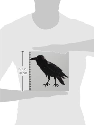 3dRose db/_127523/_1 Raven Drawing Book 8 by 8-Inch