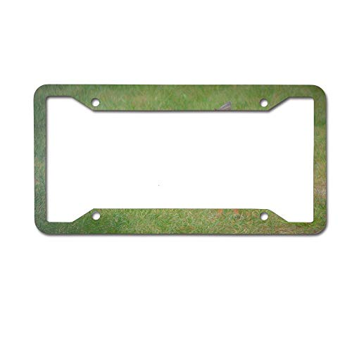- Puyrtdfs Front Yard Visitor License Plate Personalized Women Men Auto Tag Sign is Made of Aluminum 4 Holes.