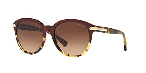 Coach Womens Sunglasses HC8140 Acetate