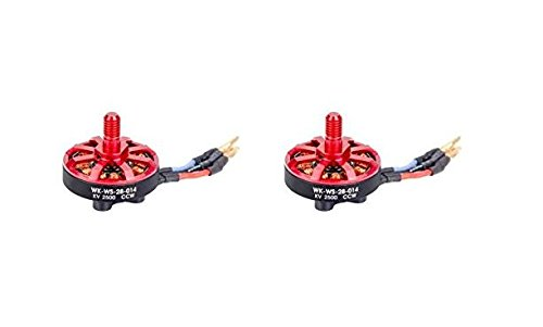 UUMART Walkera Runner 250 (R) Advanced GPS Quadcopter Drone Spare Parts 2 x Clockwise Brushless Motor(CCW)(WK-WS-28-014) Runner 250(R)-Z-10