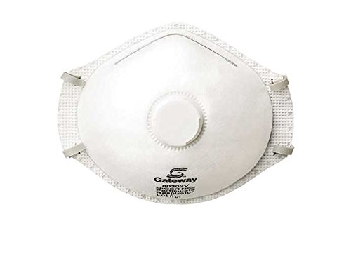 Gateway Safety 80602V TruAir Vented R95 Particulate Respirator, Regular, White (Pack of 10)
