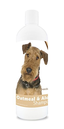 Healthy Breeds Dog Oatmeal Shampoo with Aloe for Airedale Terrier - Over 75 Breeds - 16 oz - Mild and Gentle for Itchy, Scaling, Sensitive Skin - Hypoallergenic Formula and pH Balanced