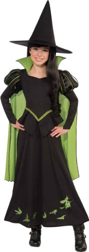 Wizard of Oz Wicked Witch of The West Costume, Medium One Color