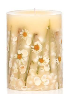 Rosy Rings Beach Daisy Medium 6.5 Inch 200 Hour Pillar Botanical Scented Candle (Candle Scented Daisy)