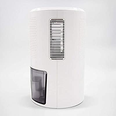 .com - Eva-Dry Edv-2400 Electric Dehumidifier with Humidistat, Medium, White -