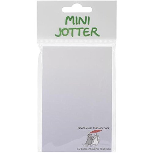 Dublin Gift 2.75 by 5.5-Inch Jotter Note Pad, Mini, Never Mind The Weather