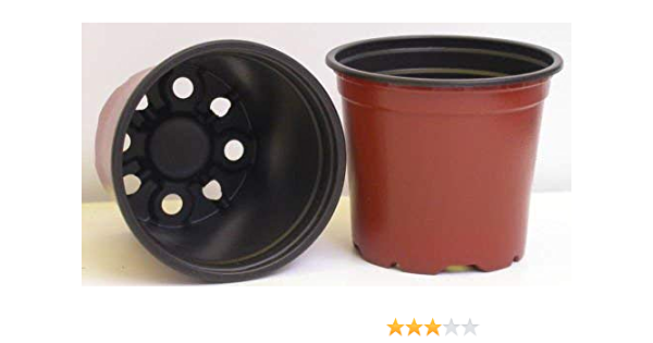 Lot Of 100 4 3 75 3 3 4 Inch Plastic Flower Nursery Pots Wholesale Price Garden Outdoor
