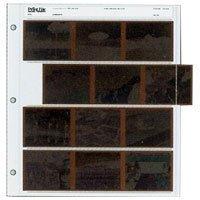 Printfile Universal Format 6 X 7 CM 100 Pack - Printfile 1204UB100 by Print File