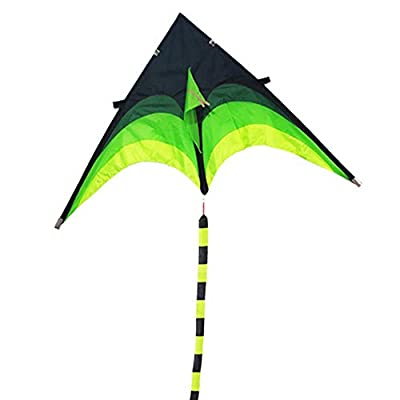 XYANM Super Huge Kite, Line Stunt Kids Kites Toys Kite Flying Long Tail Outdoor Fun Sports Gifts Kites for Adults 160cm: Home & Kitchen