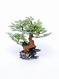 Pen-Plax RR970 Ornament Bonsai Tree, 10\