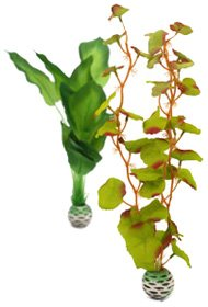 (Medium, Green Green) biOrb Easy Plant Sets