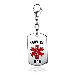 SG Service Dog Tag with Red Medical Alert Symbol Stainless Steel W/Lobster Claw Clasp Easily Attach to Collar Harness Vest