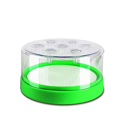 Disposable Fly Trap Catcher Fly Catcher Insect Trap Hanging Style Pest Control for Hotel in Door July 26   A