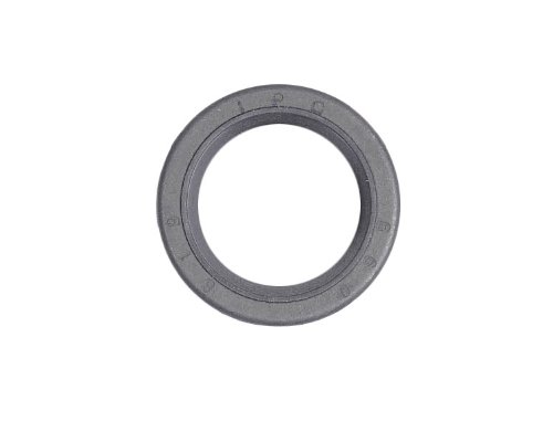 briggs-stratton-299819s-oil-seal-replaces-393862-89660-555071