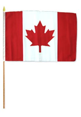 One Dozen Canada 12x18in Stick Flags. Review