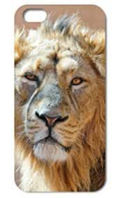 Fashion The Lion Pattern Protective Hard Case Cover For iPhone 5 5S #058