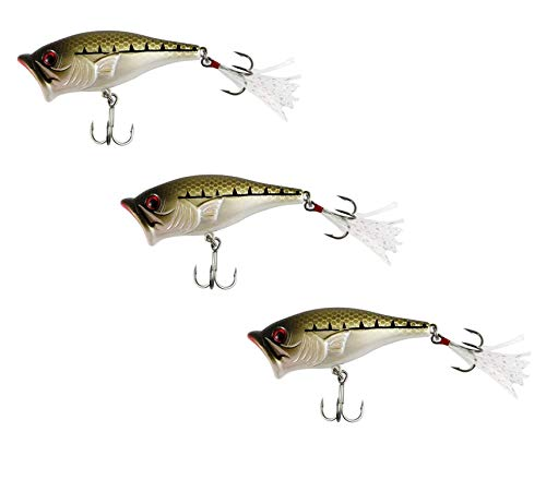 SteelShad - Bass Lures - Topwater Popper for Bass Fishing - Long Casting Topwater Lure Perfect for Bass and Pike Fishing - Baby Bass Popper 3 Pack
