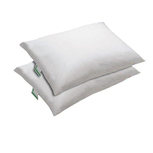 bed-bug-protection-pillow-encasement-king-size-set-2-piece