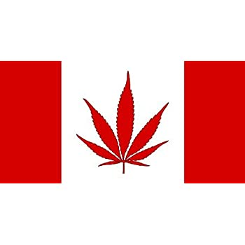 Image result for canada flag pot
