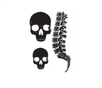 5d2fa7916 Amazon.com : Vixen Bodylicious Body Art Tattoos, Skulls & Spine ...