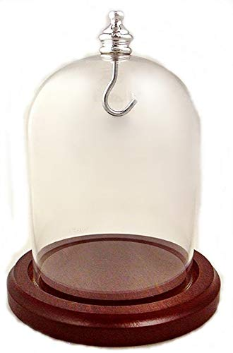 3 x 4 Pocket Watch Glass Display Dome Cloche, Silver Knob & Hook, Walnut Stained Base