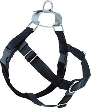 "Freedom No-Pull Harness ONLY (1"" Wide Large (LG), Black w/Silver Loop)"