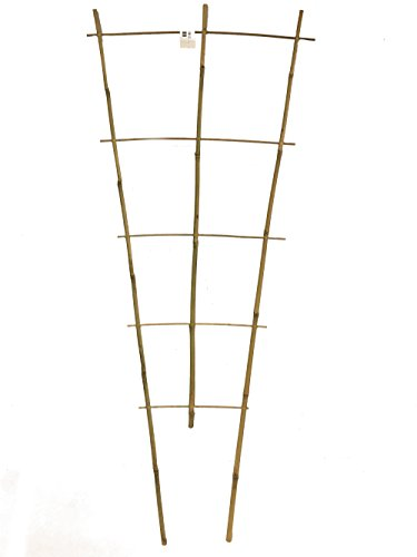 (Master Garden Products BLT-60 Bamboo Ladder Trellis)