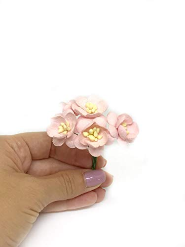 1-Light-Pink-Cherry-Blossoms-Mulberry-Paper-Flowers-with-Wire-Stems-Mauve-Paper-Flowers-Miniature-Flowers-DIY-Wedding-Wedding-Decor-Artificial-Flowers-25-Pieces