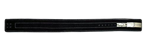 FlexzFitness Lever Buckle Powerlifting Belt 10mm Weight Lifting