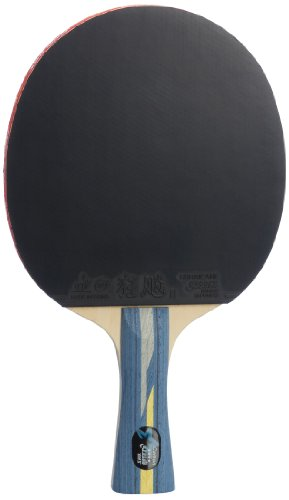 - DHS Professional Quick-attack X Series Carbon Table Tennis Racket-shakehand