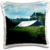 ET Photography Nature Scenes - An old barn hidden by tall grass in the country in Kentucky - 16x16 inch Pillow Case