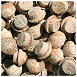 WIDGETCO 5/16'' Oak Button Top Wood Plugs