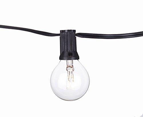 Aspen Lights C7B1110C Global String Lights 12'/11 Lights Clear Bulb Black Cord, 20 Gauge (Aspen Outdoor Light)