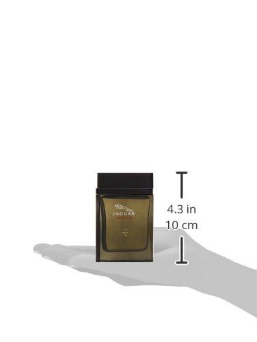 عطر جاغوار فيجن III او دي تواليت للرجال - بحجم 100 مل