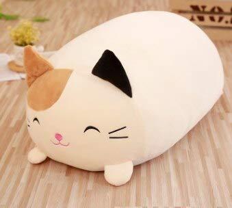 Amazon.com: Cojín de peluche con diseño de rana y gato ...