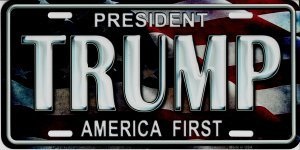 Smart Blonde President Trump America First Metal License Plate