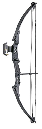 Leader Accessories Compound Bow 40 - 55 lbs 27' - 29' Archery Hunting Equipment with Max Speed 220fps (Black)