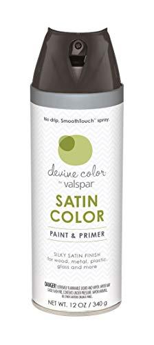 Valspar YS1040201B Devine Color Aerosol, 12 Ounce, Black (Paint Satin Valspar Spray)