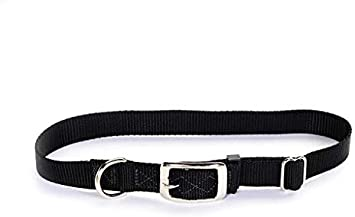 Tufflock NYLON Dog Collar STARS /& STRIPES  Plastic OR Metal Buckle MADE IN USA
