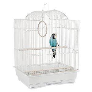 Jaulas de selva Panama pequeña jaula de pájaros blanco: Amazon.es ...