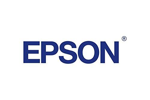 Epson EPSN-12PUSBG Cable, USB Plus Power, 12' Cable, Dark Gray