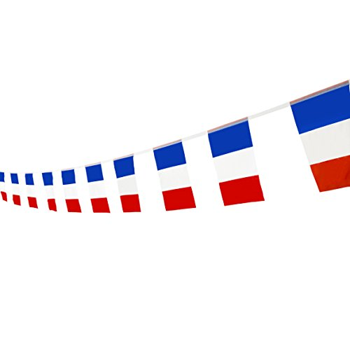 Kind Girl France Flag French Flag,100Feet/76PcsNational Country World Pennant Flags Banner,Party Decorations Supplies For Olympics,Bar,Indoor and outdoor flags,Intarnational Festival